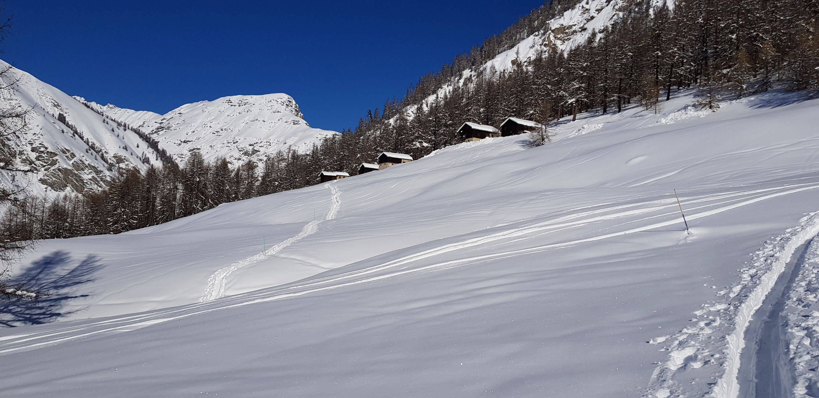 Livigno  snow-shoes trail: Immagine 1